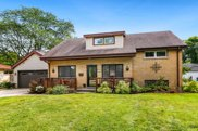 447 Bunning Drive, Downers Grove image