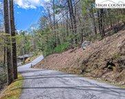 TBD Trout Lake  Road, Deep Gap image