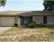 7337 Orchid Lake Road, New Port Richey image