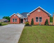 1017 Pochard Drive, Conway image