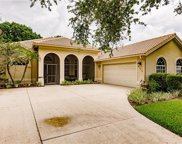 6359 Old Mahogany Ct, Naples image