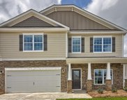 1308 Canopy Crest Drive, Chapin image