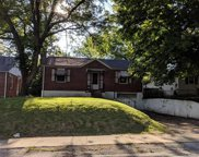 739 North Elizabeth  Avenue, St Louis image