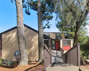 321 Durant  Way, Mill Valley image