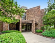 925 Spring Hill Drive Unit 311, Northbrook image