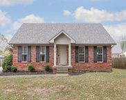 8019 Red Bud Hill Dr, Louisville image