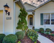 11641 Old Cypress Cove, Parrish image