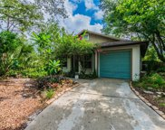 3647 Linmac Court, Palm Harbor image
