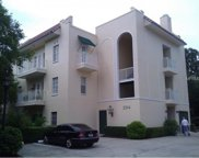2314 S Clewis Court Unit 203, Tampa image