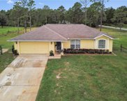 42319 Royal Trails Road, Eustis image