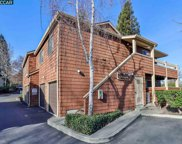 658 Fig Tree Ln, Martinez image