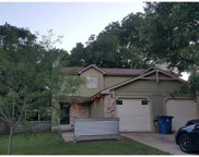 13206 Saxby Ct, Austin image