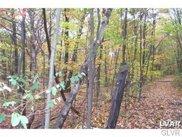West Mountain, Bushkill Township image