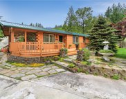 17501 433rd Ave SE, Gold Bar image