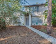 14631 Lake Forest Drive, Lutz image