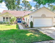 7003 Pine Hollow Drive, Mount Dora image