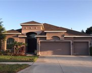 10234 Holland Road, Riverview image