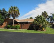 17311 Timber Oak LN, Fort Myers image