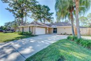 13514 Clubside Drive, Tampa image