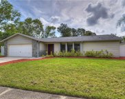 3226 Cullendale Drive, Tampa image