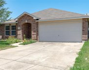 4501 Martingale View Lane, Fort Worth image