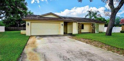 11898 Marla Lane, Seminole