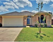 4017 Kerley Ct, Hutto image