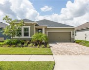 12357 Streambed Drive, Riverview image