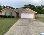 4235 Candle Brook Ln, Bessemer image