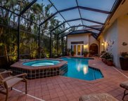 22025 Natures Cove Ct, Estero image
