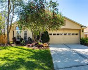 15502 Granby Place, Tampa image