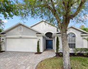 14324 Moon Flower Drive, Tampa image