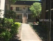11705 Raintree Village Boulevard Unit C, Temple Terrace image
