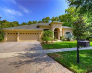 21335 Lake Vienna Drive, Land O' Lakes image