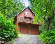 21035 Country View Drive, Chugiak image