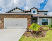 11829 Thicket Wood Drive, Riverview image