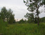 LOT #6 NW 30 ST, Chiefland image