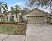 14425 Pepperpine Drive, Tampa image