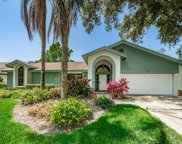 3268 Cobbs Drive, Palm Harbor image