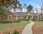 8704 Spring Shore Trail, Tallahassee image