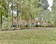 10425  William Penn Lane, Charlotte image