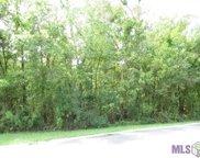 Lot 118 River Highlands, St Amant image