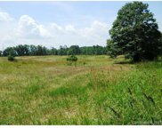 170 Acres  Charlotte Highway, York image