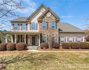 10730 Anglesey  Court, Charlotte image
