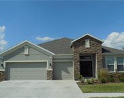 6414 Doe Path Court Drive, Wesley Chapel image