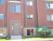 313 W Lehow Avenue Unit 1, Englewood image