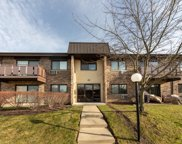2634 North Windsor Drive Unit 204, Arlington Heights image