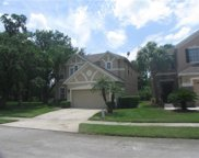 1600 Eagle Feather Drive, Kissimmee image