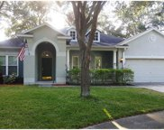 1535 Rolling Meadow Drive, Valrico image