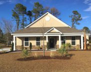 1205 Whooping Crane Drive, Conway image